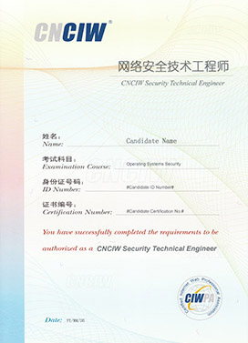 网络安全技术工程师