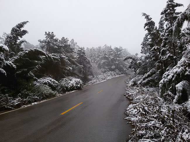 同学们,手牵手,我们一起漫步西山赏雪景!